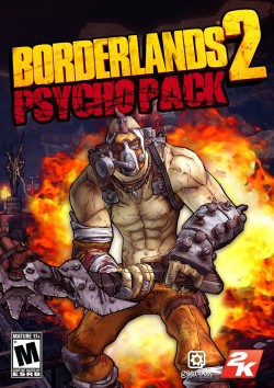 Borderlands 2 Psycho Pack (Steam) Global CD Key