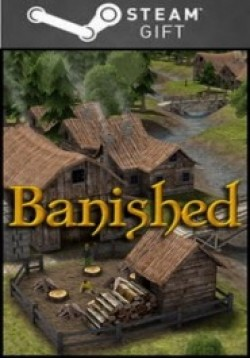STEAM GIFT : Banished RU VPN Activation