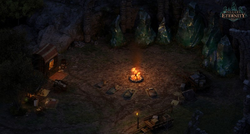 Pillars of Eternity Champion Edition (Steam) Global CD KEY: 12